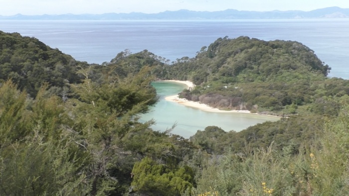 abel tasman park