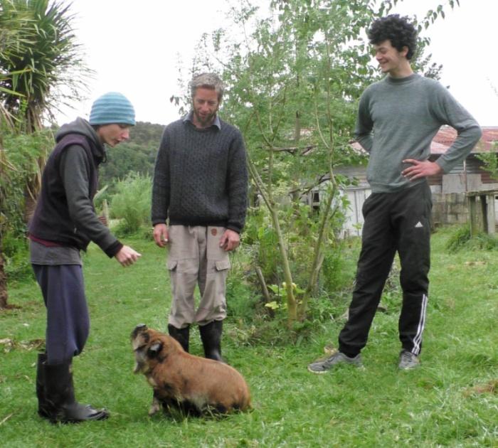 melisa feeding pig